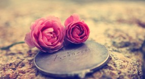 Love is like a Tiny Rose, cherrish it